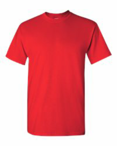 Heavy Cotton T-Shirt - 5000